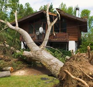 img-storm-damage